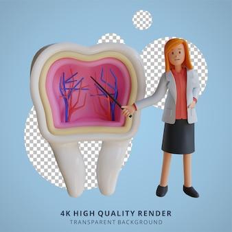 Docteur féminin 3d expliquant l'intérieur de l'illustration de caractère de dents