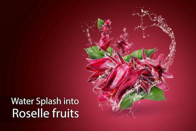 Eau éclaboussant sur roselle hibiscus sabdariffa fleur rouge sur rouge