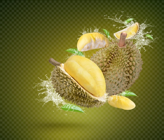 Éclaboussure d'eau sur des fruits mûrs de durian isolés sur fond vert psd premium