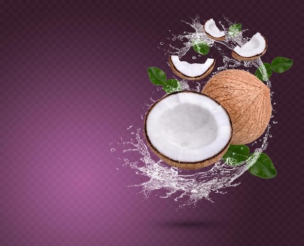 Éclaboussure d'eau sur la noix de coco avec des feuilles de bergamote isolées sur fond violet psd premium