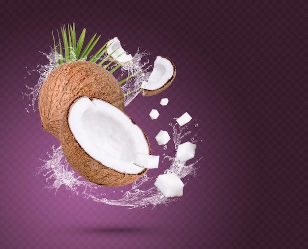Éclaboussure d'eau sur la noix de coco avec des feuilles isolées sur fond violet psd premium
