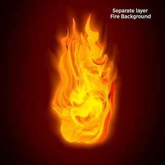 Feu flammes isolées