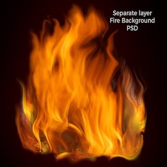 Flammes de feu