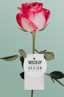 Fleur rose avec une maquette d'étiquette
