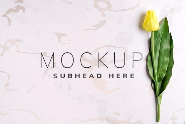 Fleurs de tulipe jaune sur maquette en pierre