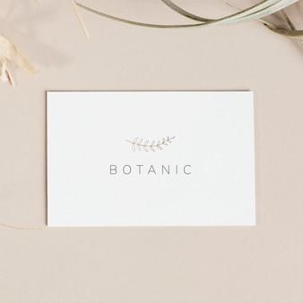 Flyer botanique isolé sur fond