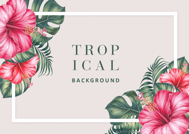 Fond tropical avec des hibiscus et des palmiers.