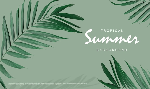Fond de vente d'été tropical de feuilles de palmier sur fond vert