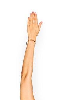 Geste de la main isoler sur fond blanc