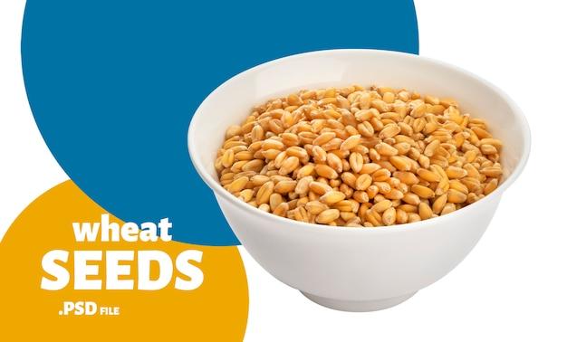 Graines de blé dans un bol, isolé sur blanc