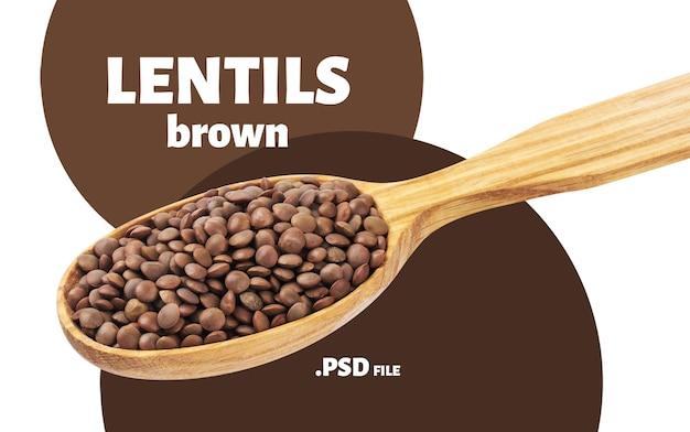 Gros plan sur les lentilles brunes en cuillère isolé