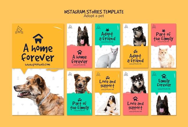 Histoires instagram avec adoption d'animaux