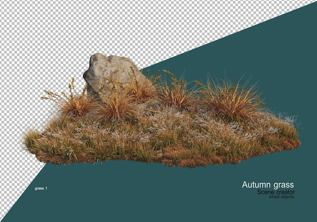Jardin d'herbe sèche en automne