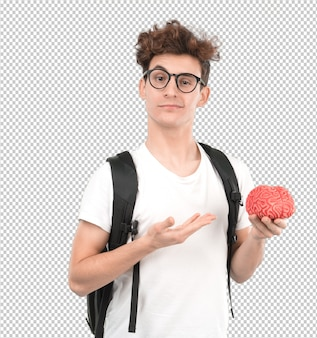 Jeune étudiant tenant un cerveau de jouet