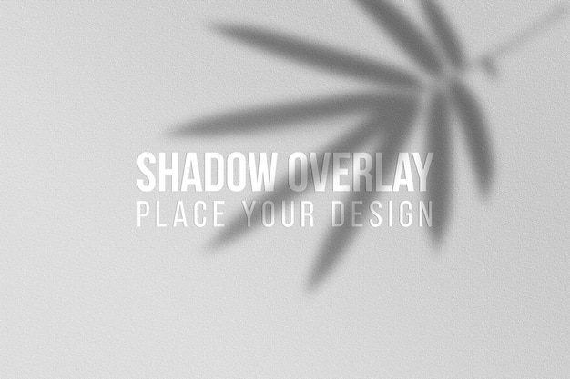 Laisse le concept transparent d'effet de superposition d'ombres