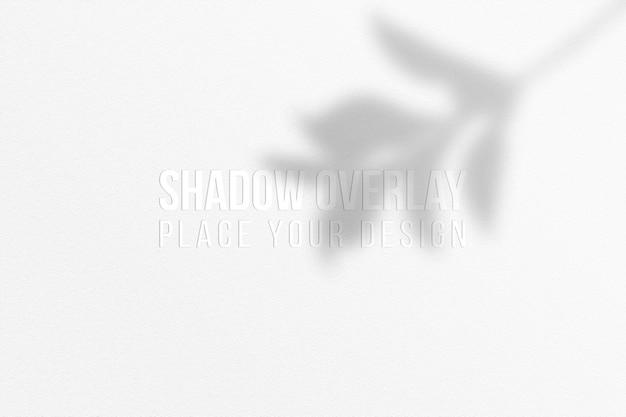 Laisse la superposition d'ombres et le concept transparent d'effet de superposition d'ombres de fenêtre