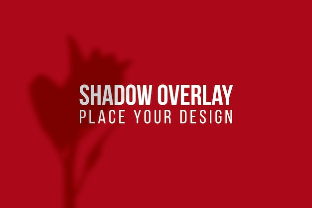 Laisse La Superposition D'ombres Et L'effet De Superposition D'ombres De Fenêtre Concept Transparent PSD Premium