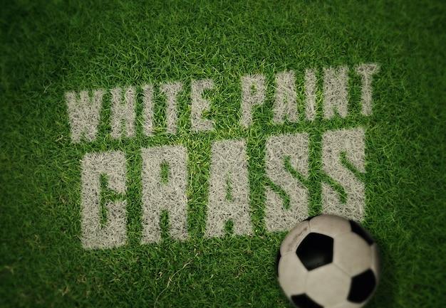 Logo ou modèle de maquette de texte - peinture blanche sur l'herbe