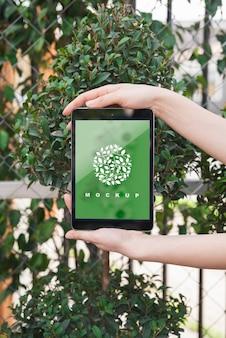 Mains sur maquette de tablette avec concept de jardinage