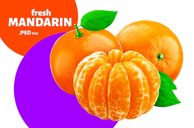 Mandarine isolée, conception de fruits pour l'emballage