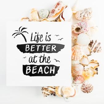 Maquette de carte avec le concept de l'été tropical avec des coquillages