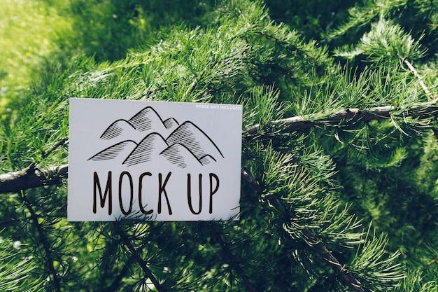Maquette de carte postale horizontale sur une branche de mélèze