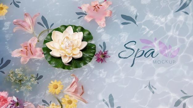 Maquette de concept de spa floral