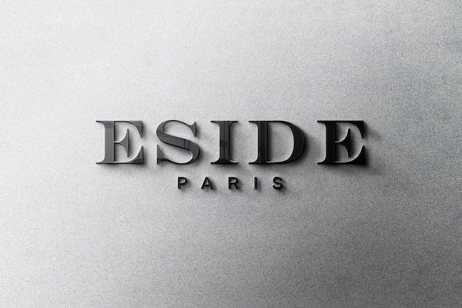 Maquette de logo 3d