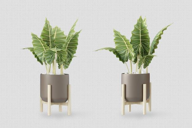 Maquette de plantes en rendu 3d dans des pots