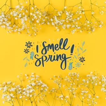 Maquette de printemps à pose plate avec fond et cadre
