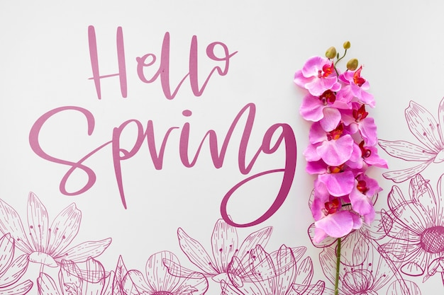 Maquette de printemps à pose plate avec fond