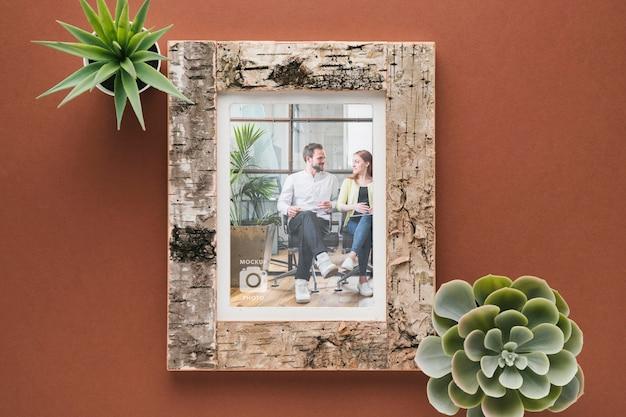 Mise à plat de cadre en bois avec plantes succulentes