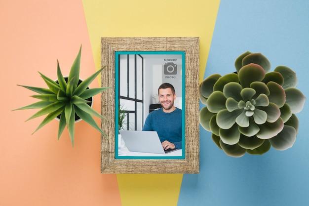 Mise à plat de cadre simpliste avec plantes succulentes