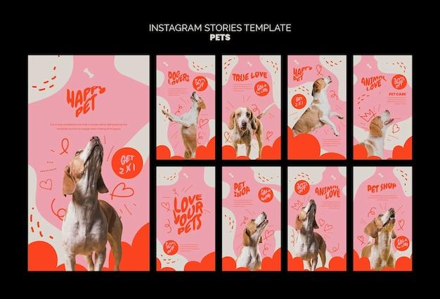 Modèle d'animaux de compagnie de conception d'histoires instagram