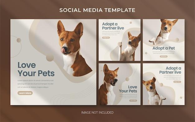 Modèle de bannière instagram carrée pour animalerie