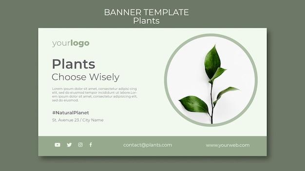 Modèle de bannière de magasin de plantes