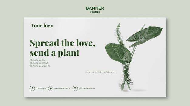 Modèle de bannière de plantes