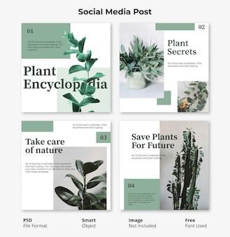 Modèle de bannière de publication sociale carré floral modifiable