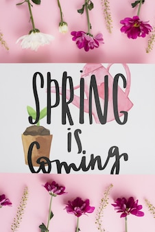 Modèle de carte pour le printemps avec des fleurs