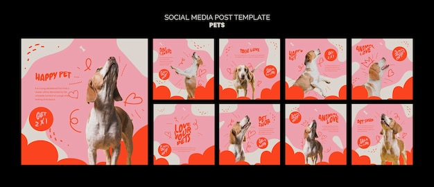 Modèle d'ensemble de publications sur les réseaux sociaux pour animaux de compagnie