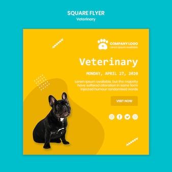 Modèle de flyer carré vétérinaire