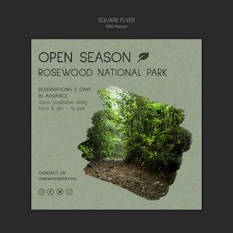 Modèle de flyer de parc national de palissandre avec forêt
