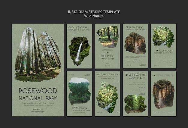Modèle d'histoire instagram du parc national de palissandre