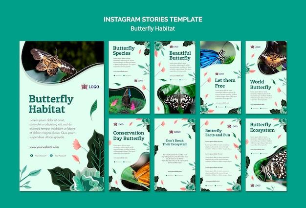 Modèle d'histoires instagram de concept d'habitat de papillon