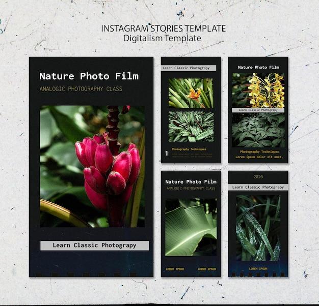 Modèle d'histoires instagram de film photo nature