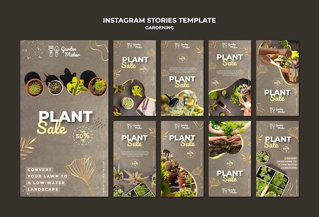 Modèle d'histoires instagram de jardinage avec photo