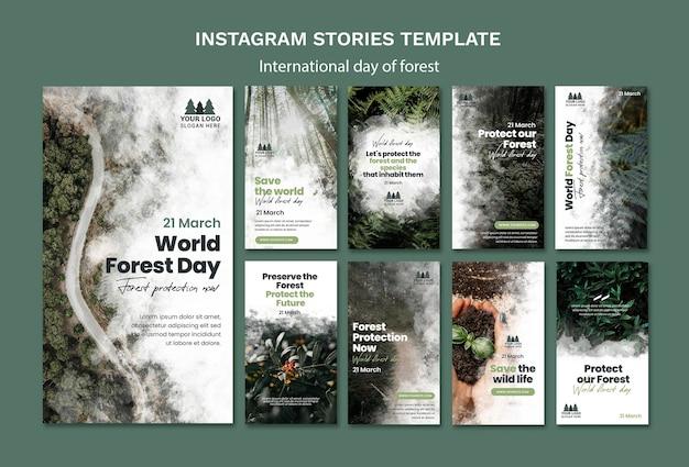 Modèle d'histoires instagram de la journée mondiale de la forêt
