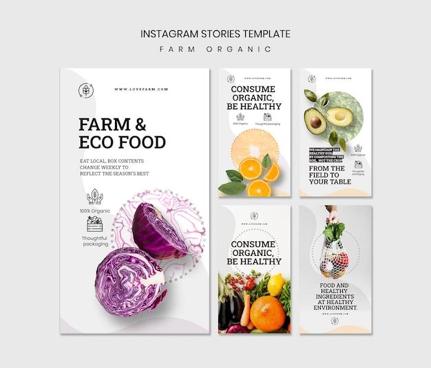 Modèle d'histoires instagram organiques de ferme