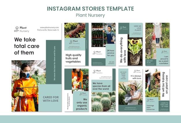 Modèle d'histoires instagram de pépinière de plantes