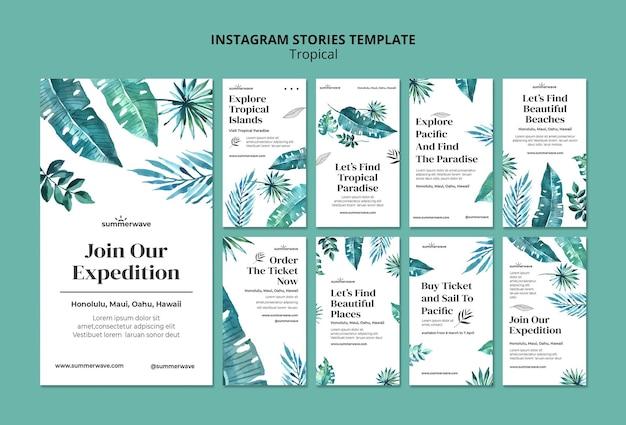 Modèle d'histoires instagram de style design tropical